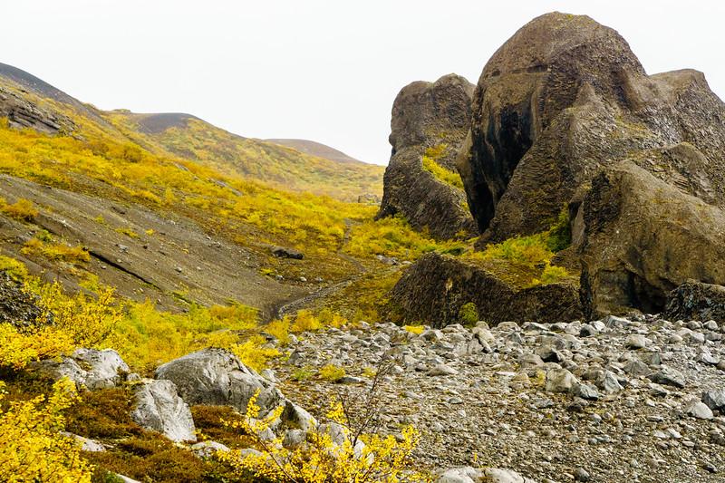 Incredible basalt formations in Hljóðaklettar, Iceland.