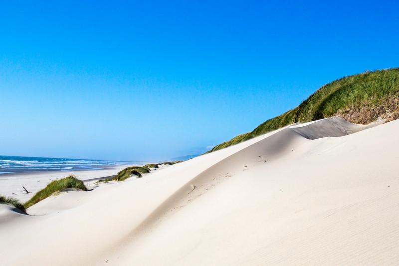 Oregon Coast Road Trip - Sand Dunes