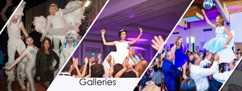 Website Galleries.jpg