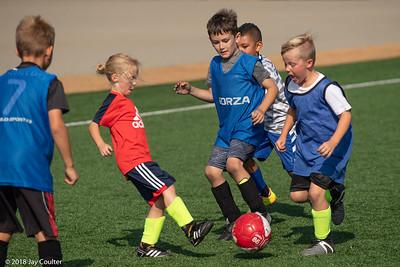 Thanksgiving Soccer Camp 11-20-2018