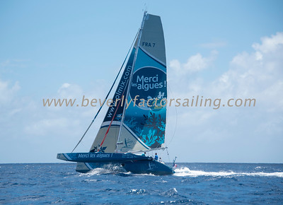 MULTIHULLS - Under Sail