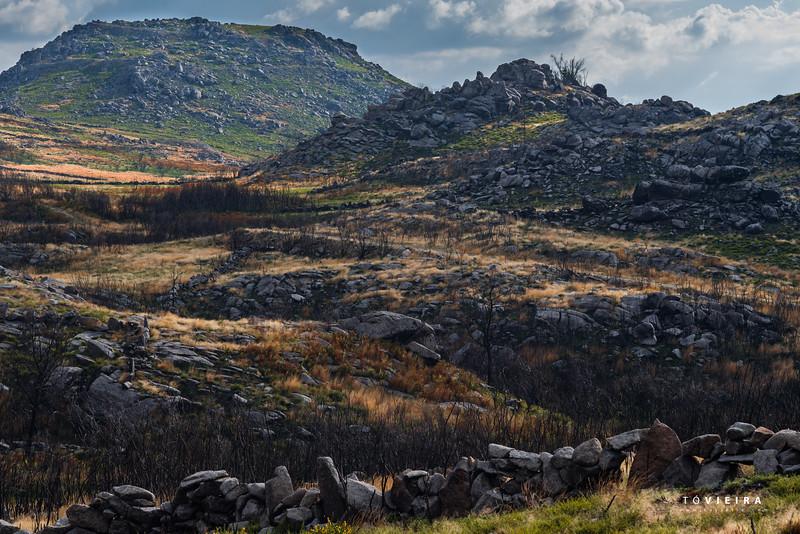 Parque Natural local Vouga Caramulo