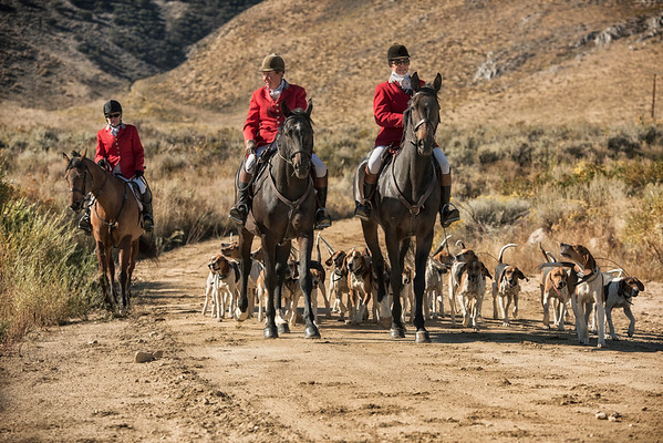 Red Rock Hounds- Reno, Nevada