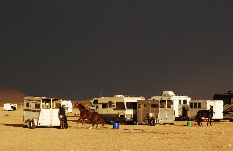Rearing Horse in Dark Stormy Desert  11 x 17