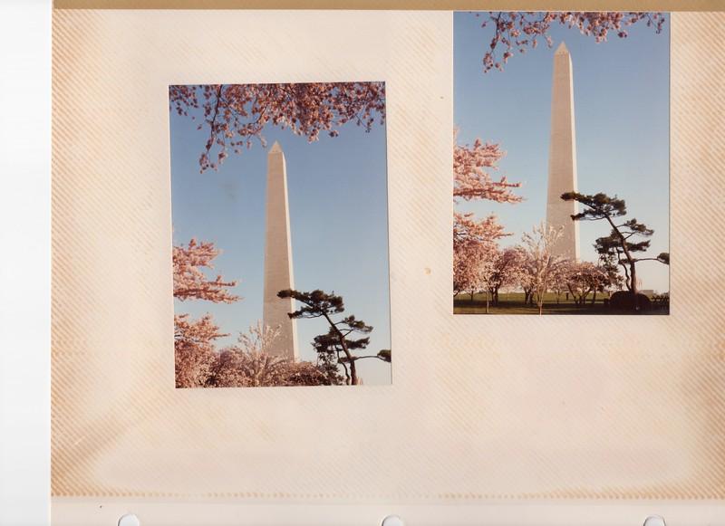 3-31-1991 Cherry 3.jpg
