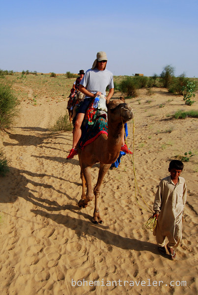 rajasthan camel train (4).jpg