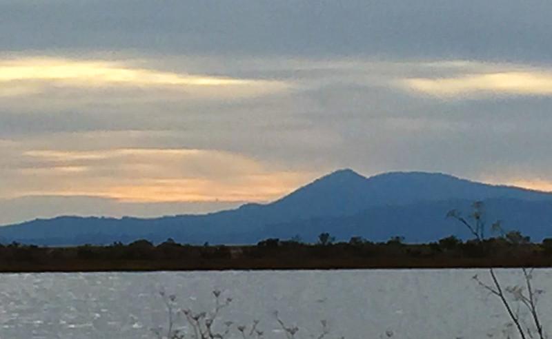 Mt. Tam.jpg