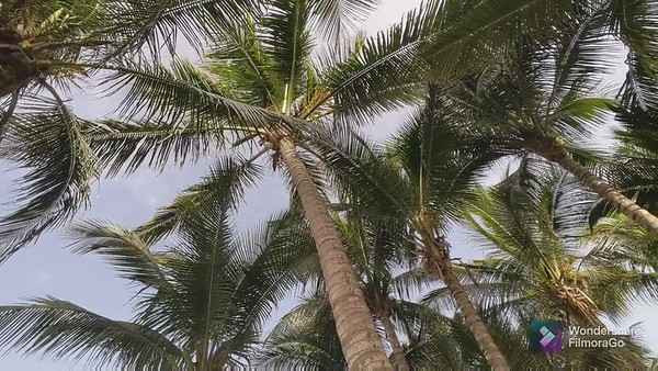 8-West Palm Beach