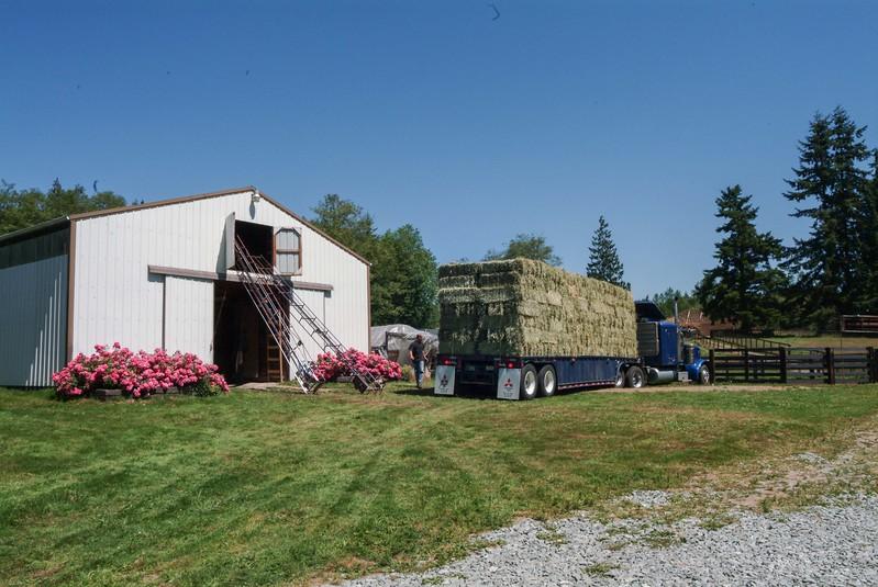 hay to barn 1.jpg