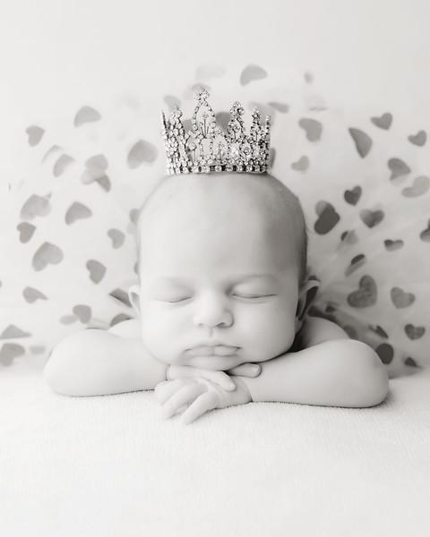 Averi Newborn session