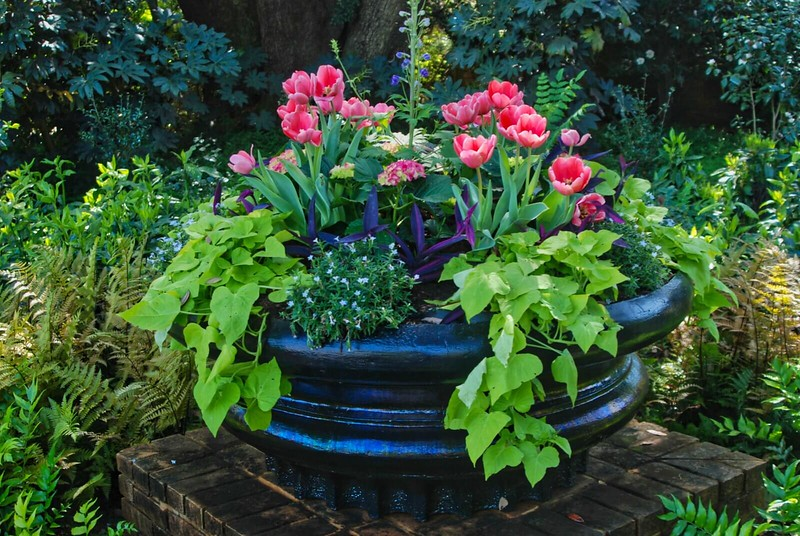 Planter with flowers at Bellingrath Gardens