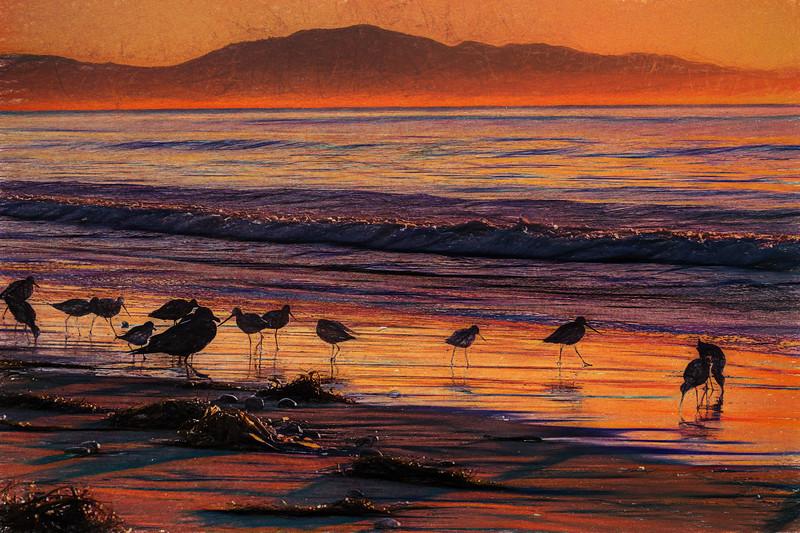 170128-Santa Barbara-344-Impressions.jpg