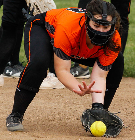 HS Sports - Dearborn High at Riverview Softball 21