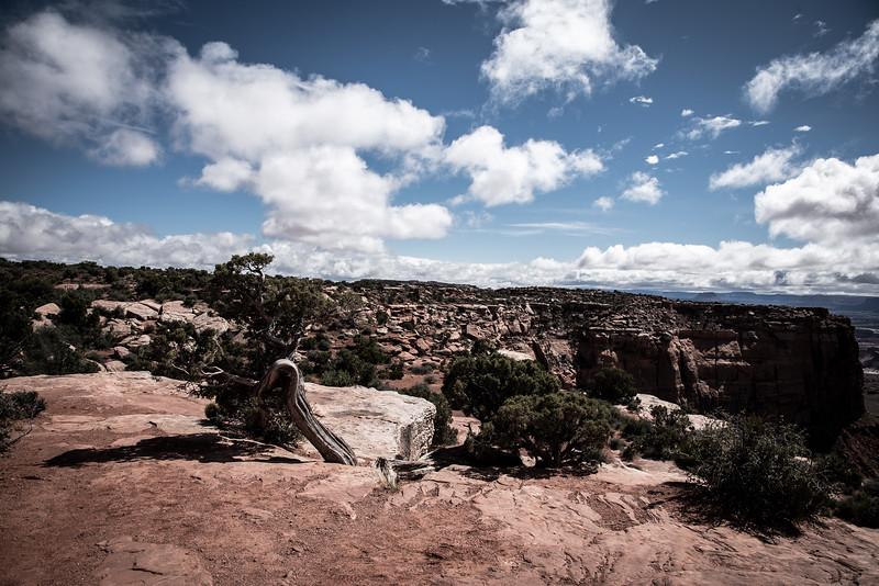 Canyonlands-17.jpg