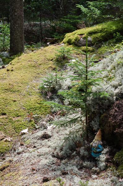 20130819-Maine_trip-3591.jpg