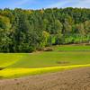 Nürnberger Land bei Krottensee