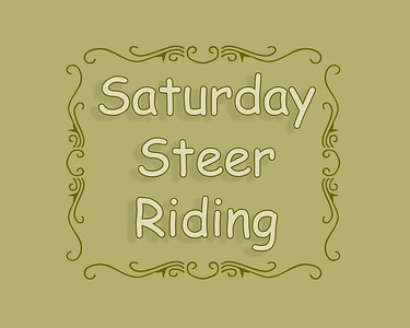 Steer Riding Saturday