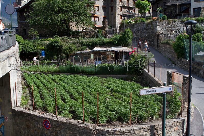 Andorra 9171.jpg