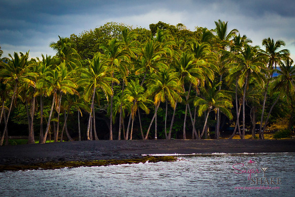 Moving on: Punalu'u Black Sand Beach. Also at the southern end of the Big Island. © 2012 Sugar + Shake