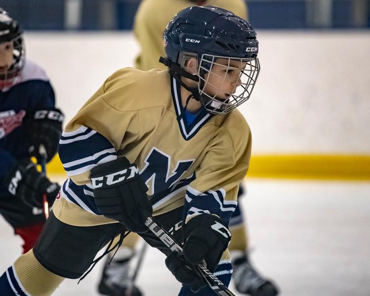 2018-2019_Navy_Ice_Hockey_Squirt_White_Team-53.jpg