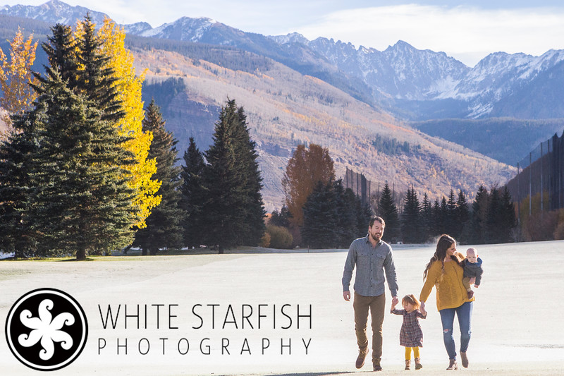 White Starfish Photography