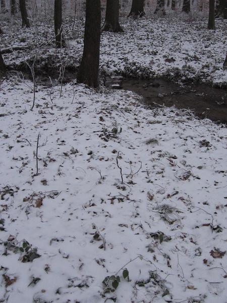 misky - 24.12.2007 004.jpg
