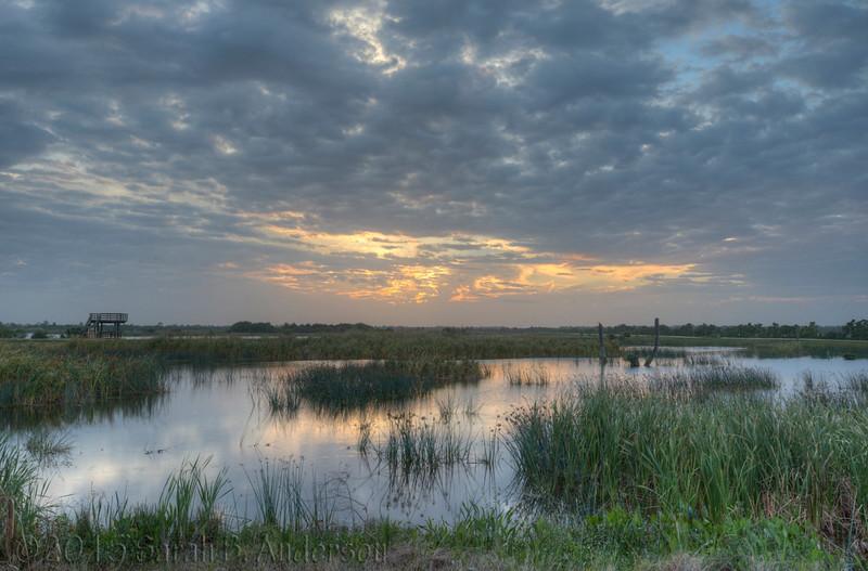 Sunset, Viera Wetlands