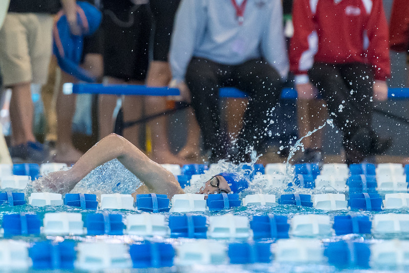 2018_KSMetz_Feb16_SHS Swimming_ State Prelims_NIKON D5_3860.jpg