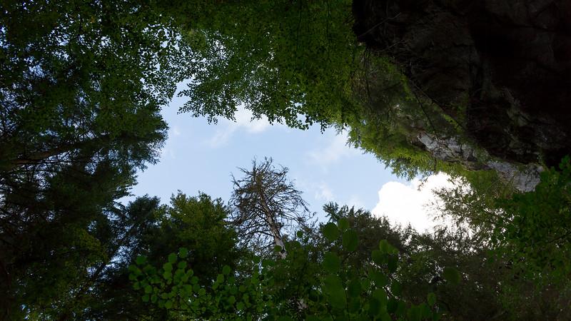 savoie-sixt-fer-a-cheval-foret-canyon-village-orage_D3_6717-HDR.jpg