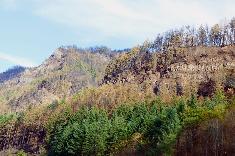 Eagle Creek Fire Damage  258.jpg