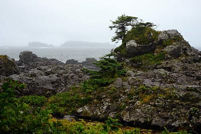 22 September : Tofino, Vancouver Island, BC