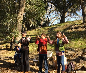 Vineyard's First Hikes 2018