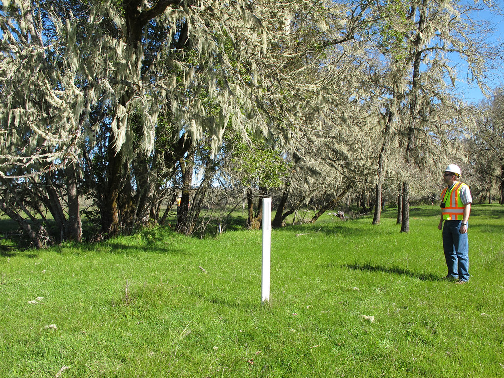 . This white stake shows the middle of the four lane freeway north of East Hill Road. The first phase is always located to the west of the white stake.