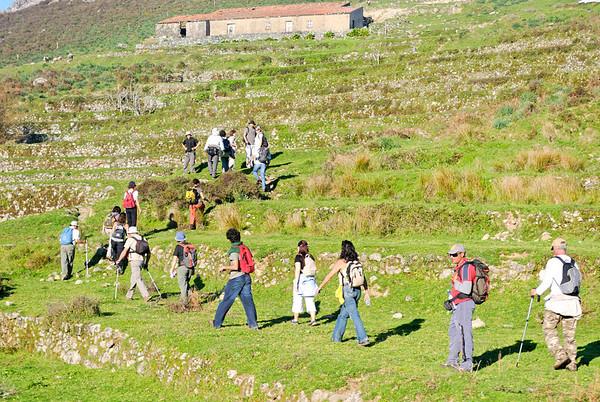 Percurso Pedrestre de Monchique a Fóia   - 20080314