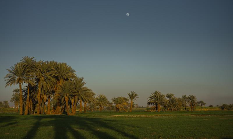 Campos próximos al hotel Marsam
