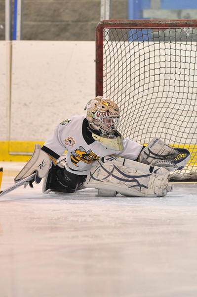 Sarnia Novice MD Tier 1 - Squirt 2-6-14