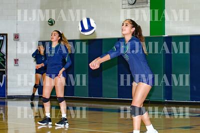 Volleyball V