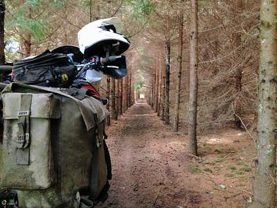 Best of Motorcycles