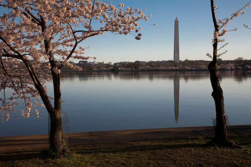 2009-04-05-Washington-DC-0710.jpg
