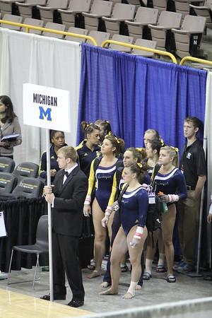 Big 10 Gymnastics