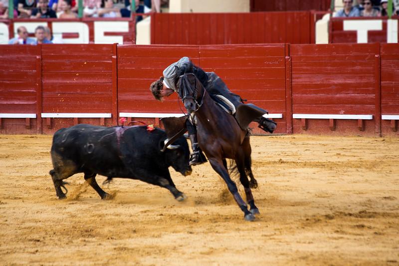 Bullfighting H36.jpg
