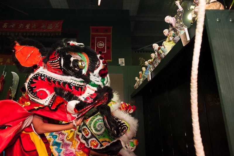 CNY 2015-24.jpg