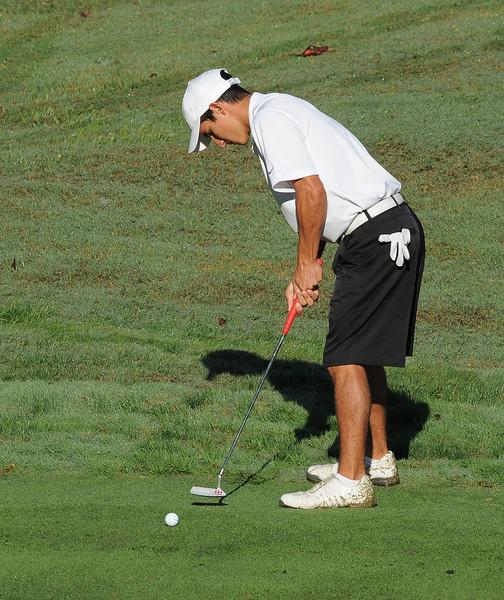 golf 8116.jpg