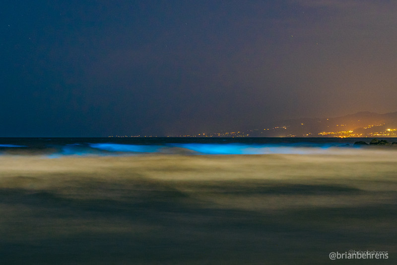 2020-05-02-bioluminescent-waves-1.jpg