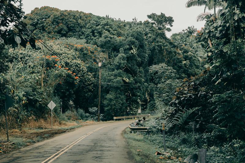 Hawaii20-363.jpg