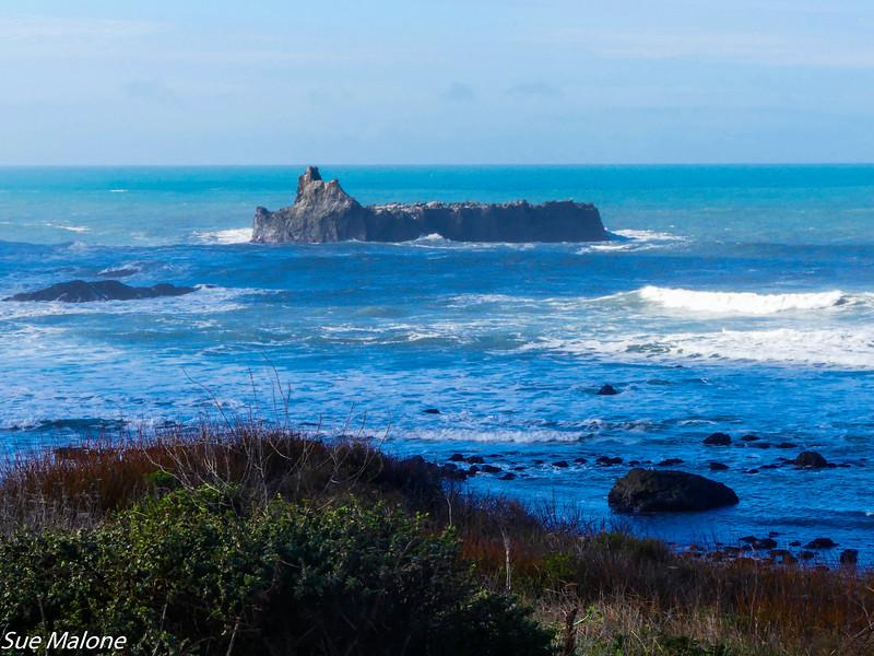 02-16-2021 Exploring the Lost Coast-21.jpg