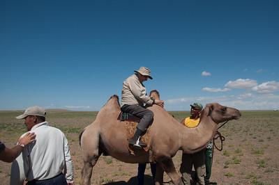 Gobi camel herders