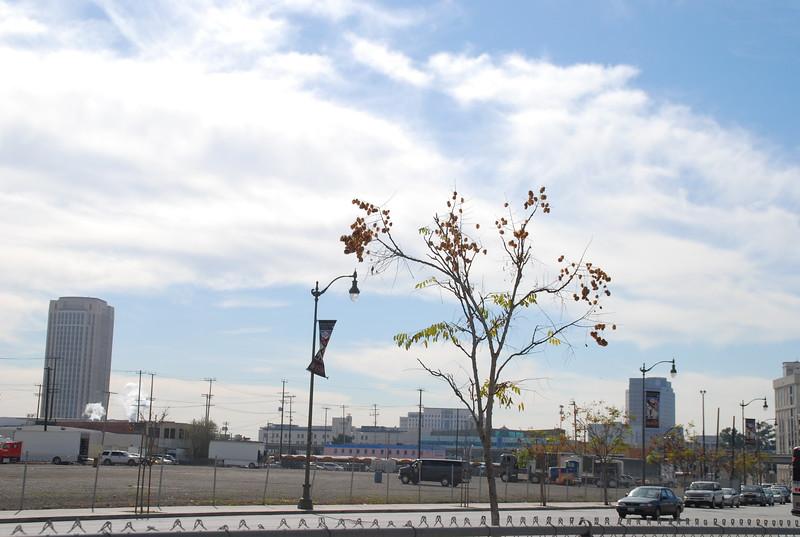 2011-01-26_LASHP_Park_Skyline_036.JPG