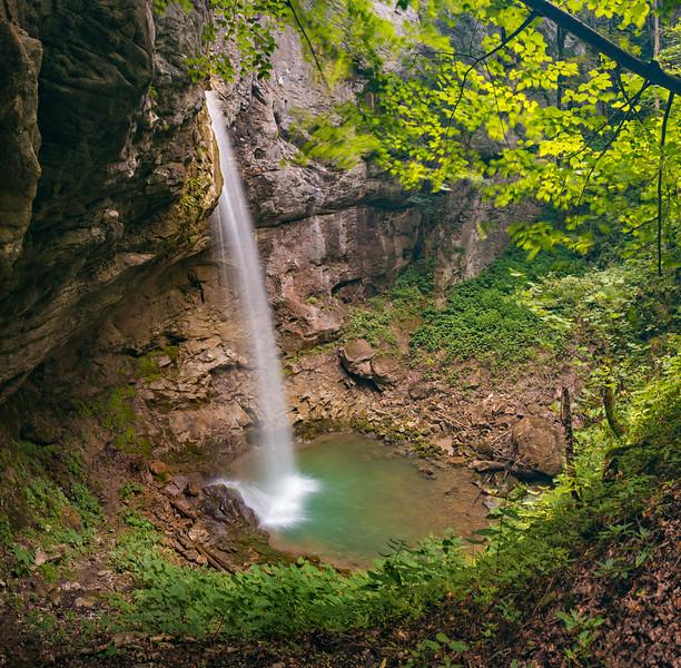 Nature X (2).jpg
