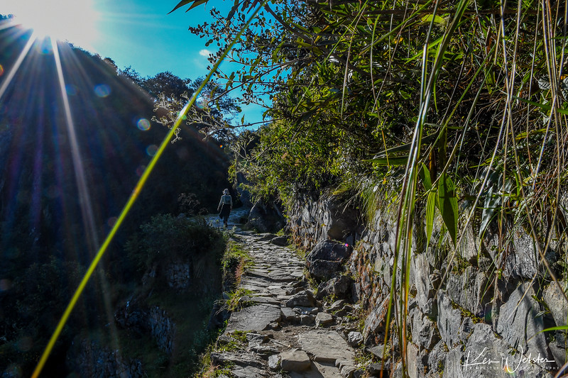 2018 Machu Picchu-96.jpg